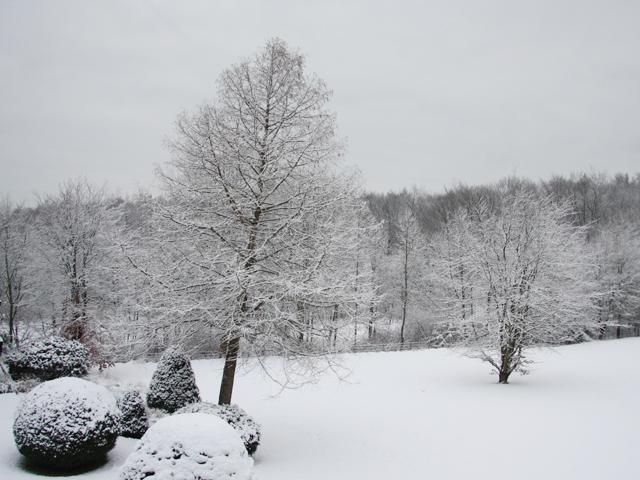 Schneelandschaft2